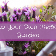 Grow Your Own Medicinal Plants