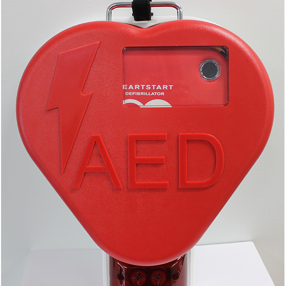 Outdoor heart cabinet (1)