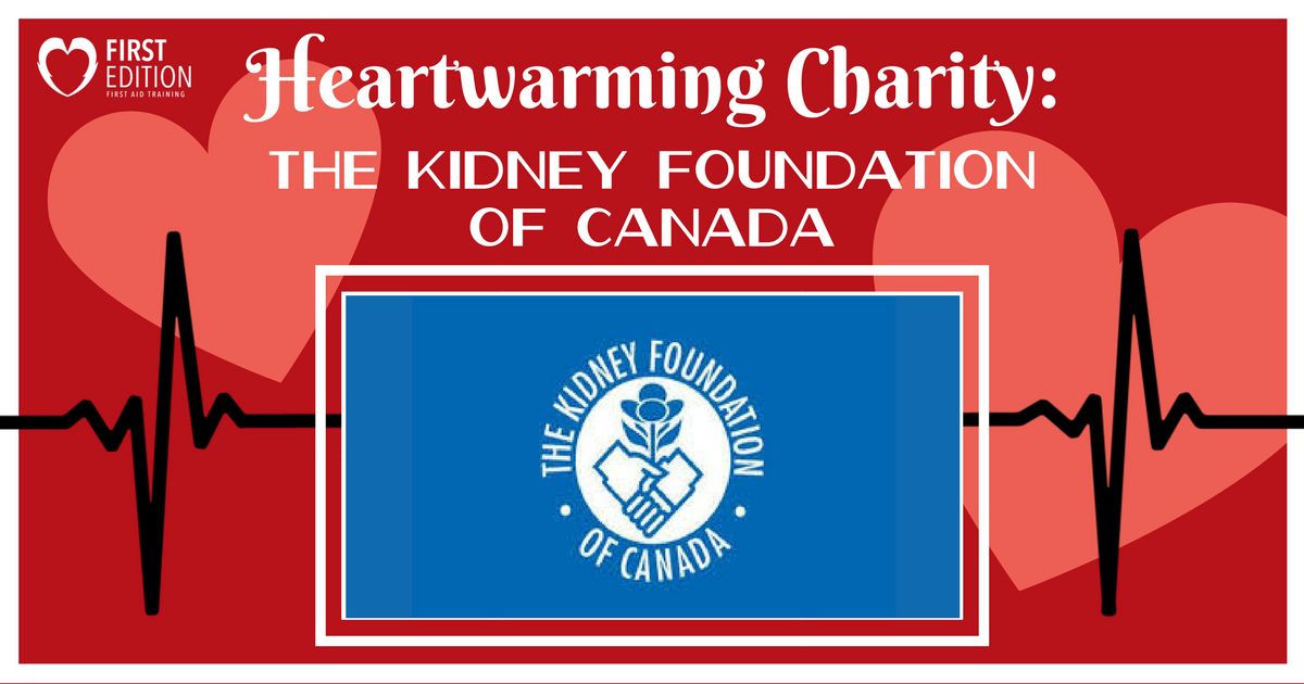 Heartwarming Charity Blog - Kidney Foundation