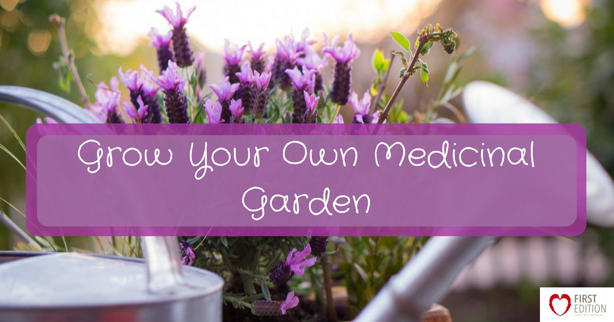 Grow Your Own Medicinal Garden Image