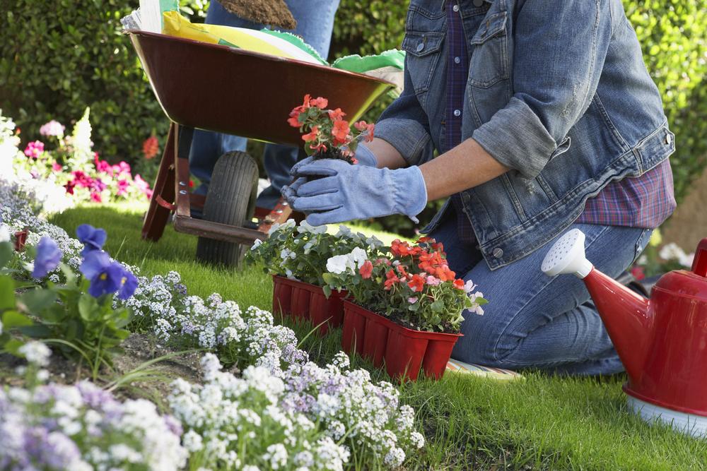 Gardening Safely - Heart Health