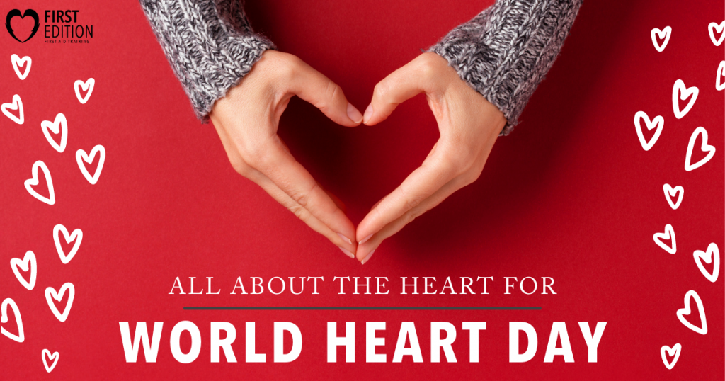 All About the Heart for World Heart Day